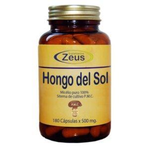 HONGO DEL SOL